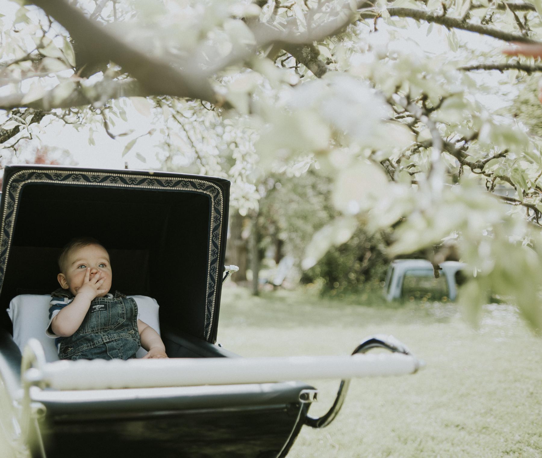 Child in antique pram in Thornbury Ontario.