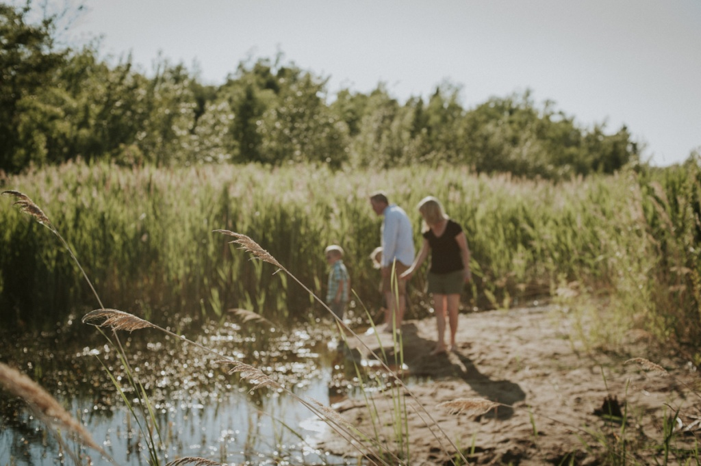 Family looking for frogs at pond. Family Photography by Sarah Tacoma.
