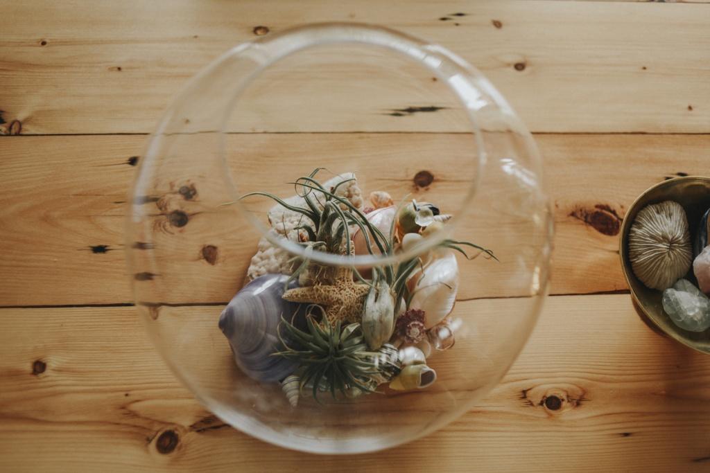 Glass bowl terrarium on wood table.
